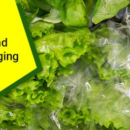 Flexible Polypropylene Packaging Solutions – A Quick Overview